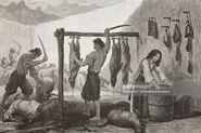Preparation of castradina, dried mutton or sheep meat, Montenegro, life drawing by Theodore Valerio (1819-1879), from Montenegro, by Charles Yriarte (1832-1898)