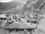 Amph tank 2 (AWM 096634)