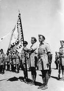 Чехословацкие солдаты в африке