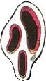 Дородорос