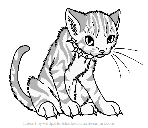 BloodClan Tabby Lineart by WildpathOfShadowClan.png