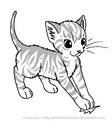 Apprentice Tabby Lineart by WildpathOfShadowClan.png