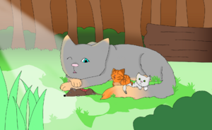 Graufeuer mit Taujunges und Löwenjunges V2