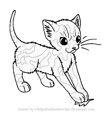Apprentice Tortie Lineart by WildpathOfShadowClan.png