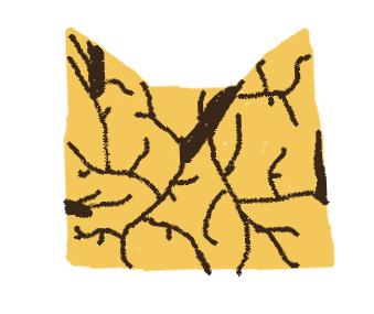 Die Blätter, die alles schützen (Der Baum der Clans)