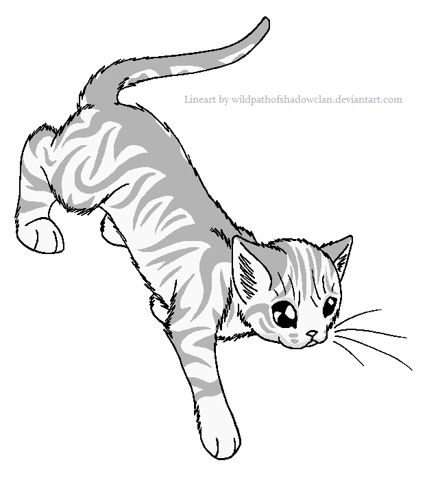 Cave guard Tabby Lineart by WildpathOfShadowClan.png