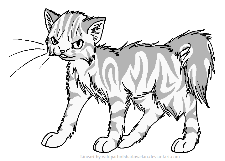 Evil Longhaired Tabby Lineart by WildpathOfShadowClan.png