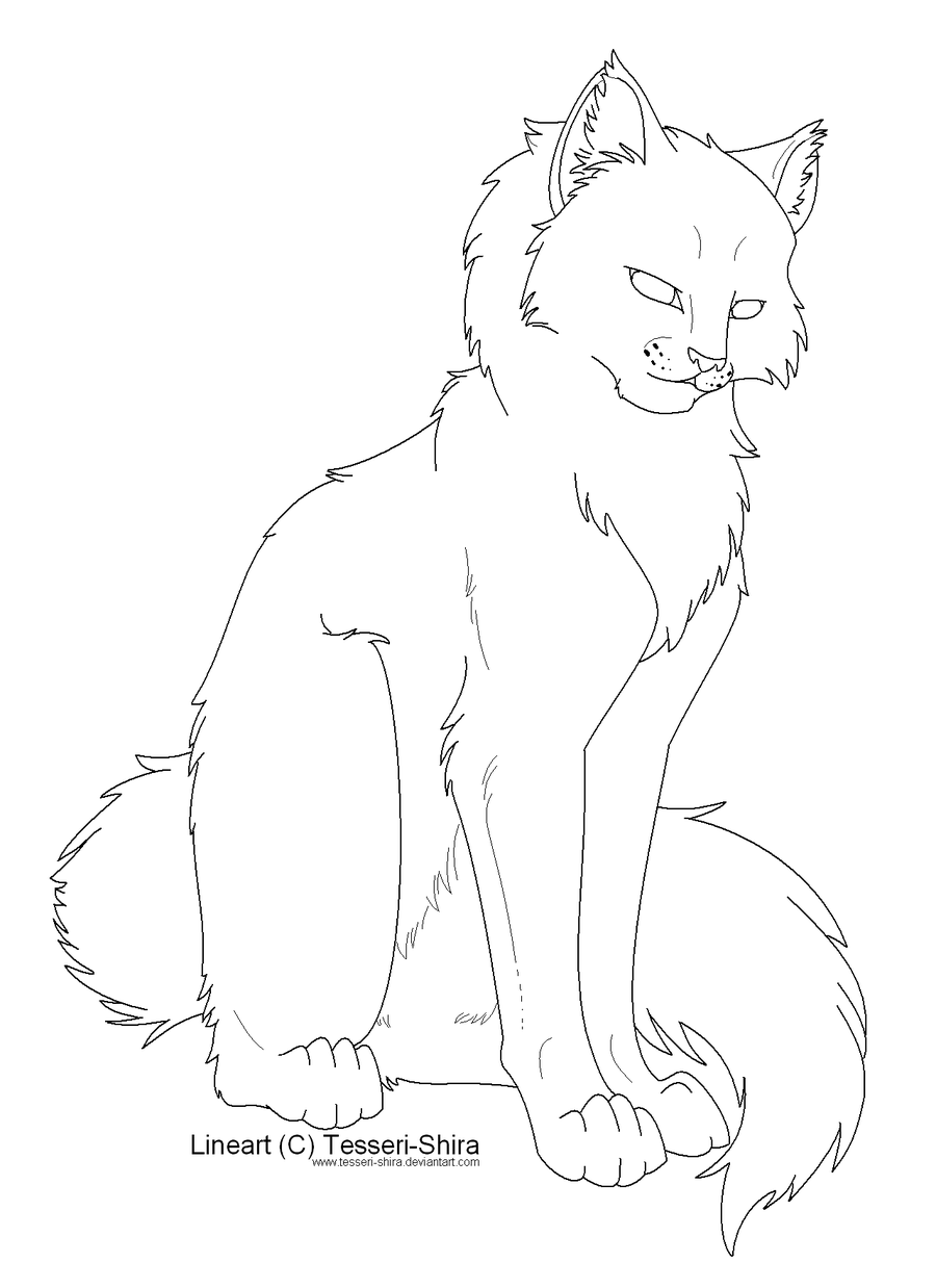 Free Lineart Longhair Cat by Tesseri Shira.png