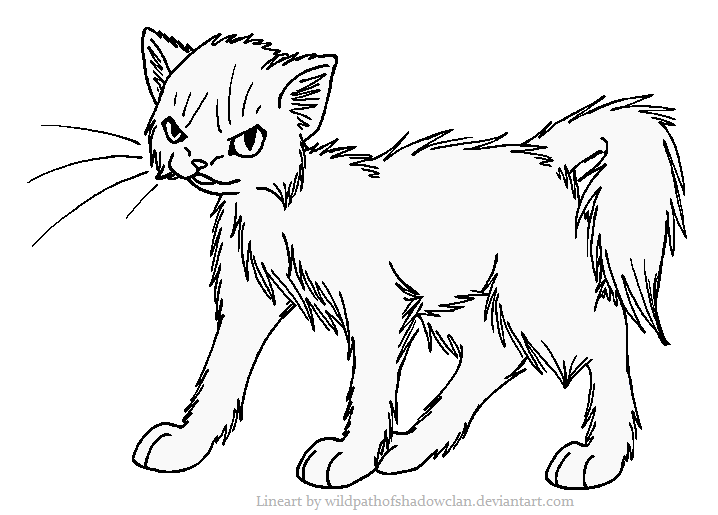 EvilLonghaired Warrior Lineart by WildpathOfShadowClan.png