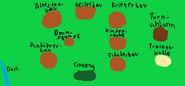 Aktueller Feuerclan-Lager (by Rubinlicht)