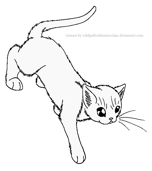 Cave guard Lineart by WildpathOfShadowClan.png