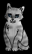 Серебристая Полоса (котёнок)
