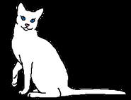 Падающее Перо (звёздный предок)