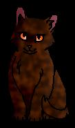 Черепашечка (котёнок)