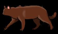 Красный Коготь бродяга