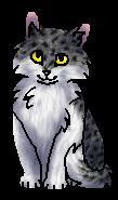 Карпозубка (котёнок)