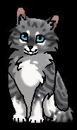 Молочай (котёнок)