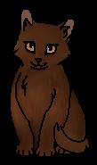 Желудёвая Шёрстка (котёнок)