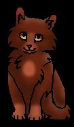 Каштанчик (котёнок)