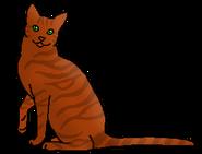 Остроглаз (звездный предок)