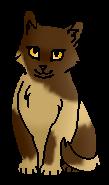 Калинушка (котёнок)
