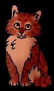 Алосветик (котёнок)