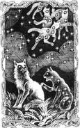 Вересковая Звезда Бабочка Месть Звёздного Луча
