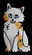 Крошечная Ветка (котёнок)