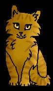 Мотылинка (котёнок)