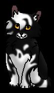 Попрыгуша (котёнок)