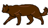 Крысобой (бродяга)