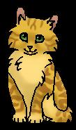 Щелкунчик (котенок)