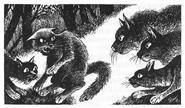 Бурый Конопушка Кроличья Звезда Крутобок Лисохвост Главная надежда