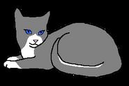 Восходящая Луна (кошка горного клана)