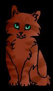 Лисёнок (котёнок)