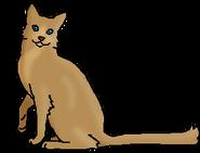 Желудёнок (звёздный предок)