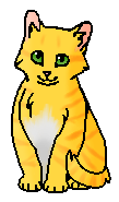 Шумелка (котёнок)