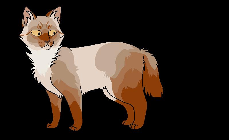 Плавник (Грозовое племя)