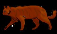 Морковка (бродяга)