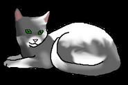 Треснувший Лёд (кот древнего горного клана)