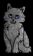 Грозовая Грива (котёнок)