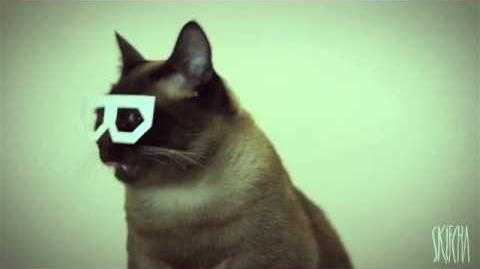 Dubstep Cat (stereo skifcha)-0