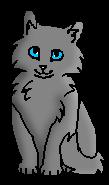 Гладкий Мех котёнок