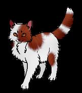 Вишнелапка (оруженосец)