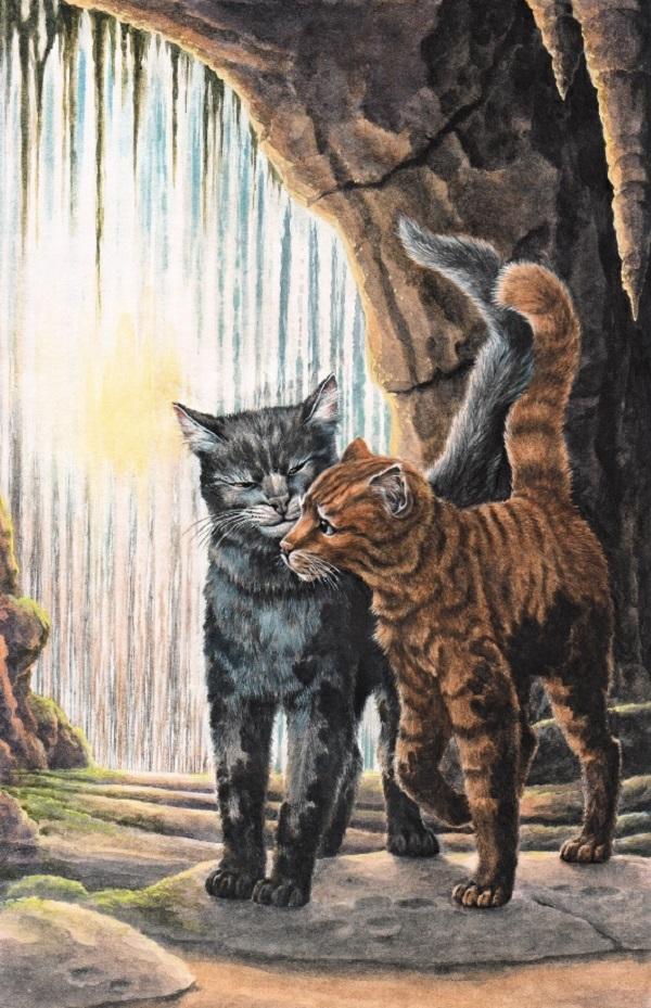 Пары котов-воителей