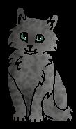 Ракушечник (котёнок)