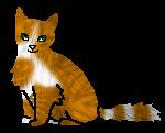 Болотничек Звёздный котёнок