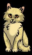 Деревяшка (котёнок)