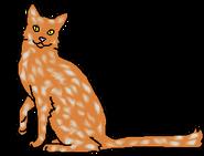 Сорняк (звёздный предок)