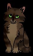 Петрушник (котёнок)